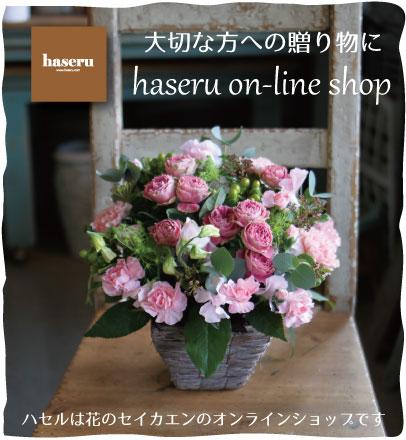 花のセイカエンオンラインショップ「ハセル」へどうぞ